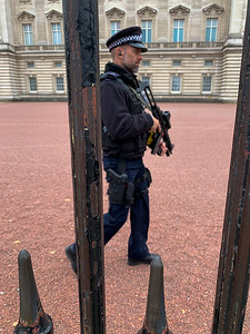 The *real* guards of Buckingham Palace, London.