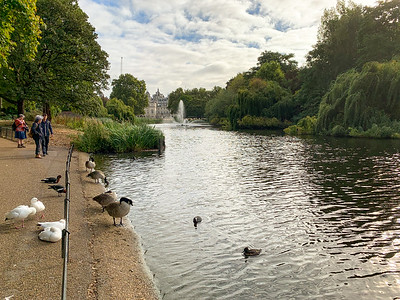 St James Park, London.
