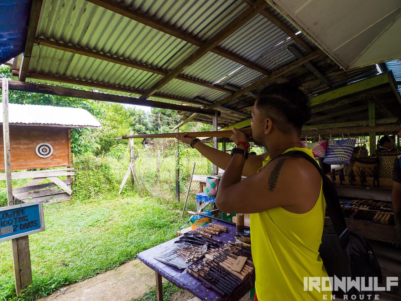Blowguns target practice