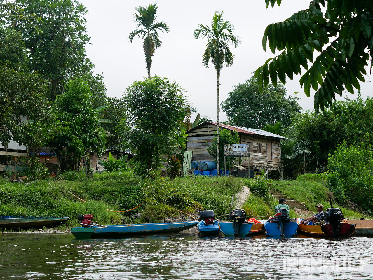 A side-trip to a Penan Settlement by the river
