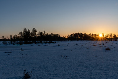 Just after sunrise, reflects off a frozen creek outside Oulu,.
