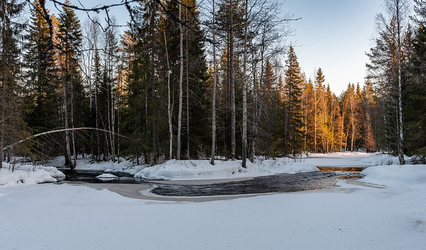 A small river in the woodlands of a National Park outside Oulu.