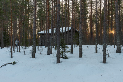 Timo approaches a cabin in the woodlands of a National Park outside Oulu.