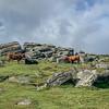 Top Tor - Dartmoor - Devon (October 2020)