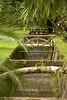 <h3>Botanical Garden in Rio de Janeiro</h3>