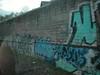Graffiti grows everywhere along train tracks too!