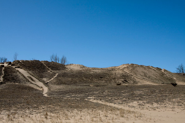 3-21-10 sand dunes
