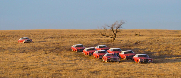 November 27, 2009, 4:30 PM:  In a field on the west side of Clark, SD Ken Bell displays a growing collection of 1976 Ford LTD's.