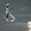 Bungee 11