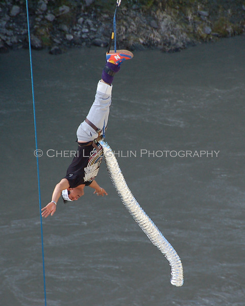 Bungee 8