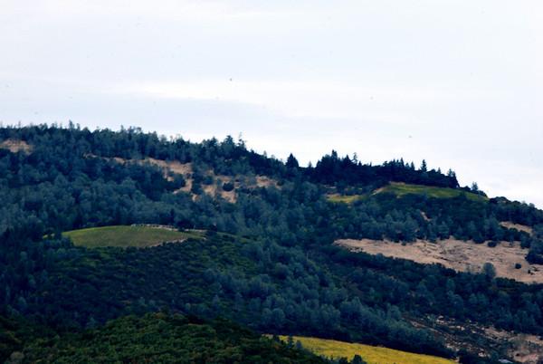 Napa Valley, CA San Francisco, CA