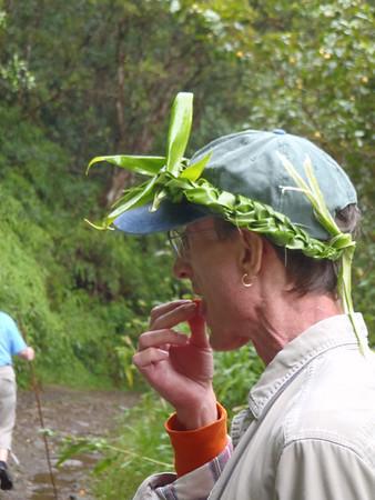 Nawiliwili, Kauai - Backroads 4X4 Adventure - Nov 4, 2010