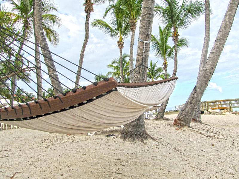 Hammocks, Key West, Fl  Copyright Sue Steinbrook June 2012