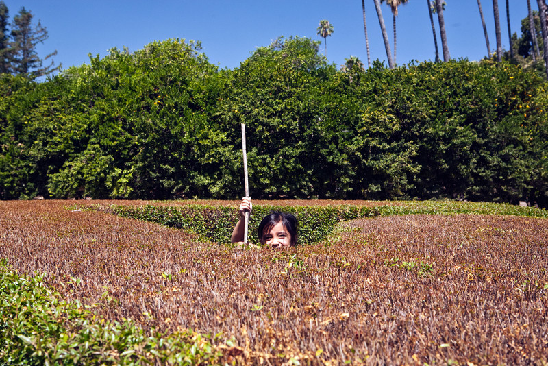 Leilani squeezed her way into the middle of these hedges to get this shot.