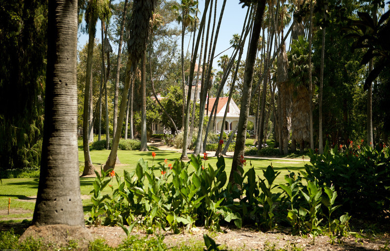 A view through the palm trees of the Queen Anne Cottage.