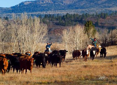 A Big Southwestern Adventure Fall 2006