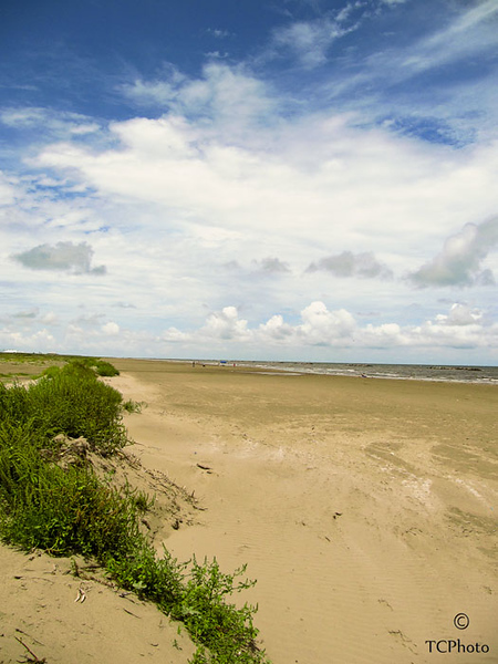 The beach at Grand Isle