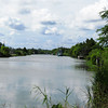 The beauty of the bayou in Lafourche Parish, Louisiana