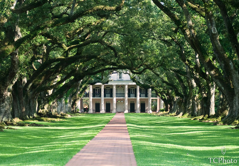 Oak Alley Plantation is one of the most beautiful places along the Mississippi River.