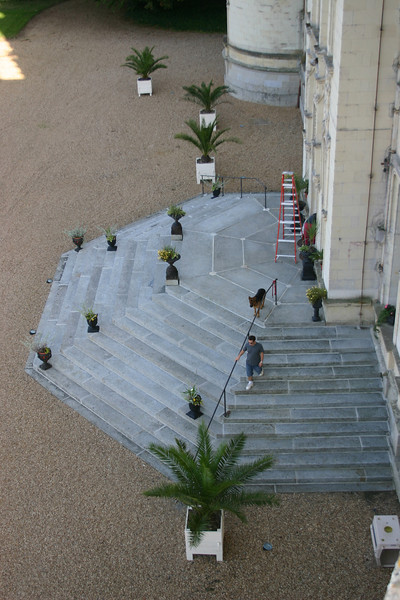 Front Entre from above as the painter works