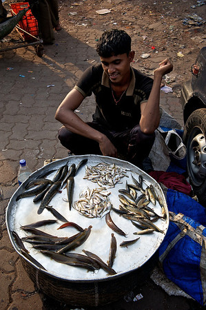 Fresh lake fish vendor, Dharavi.