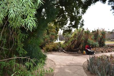 LA Arboreteum and Botanic Gardens, CA