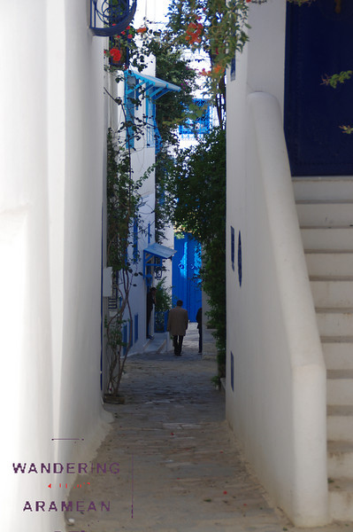 Cool little alleys all over Sidi bou Said
