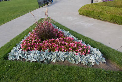 Fine plantings about the clock