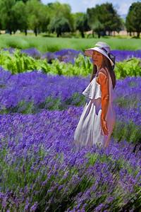 Beauty in the Fields
