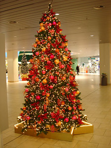 One of many Christmas trees in the Mythen centre