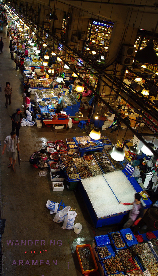 Looking down over the Noryangjin fish market in Seoul