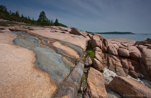 painted rocks along the shore, Acadia National Park