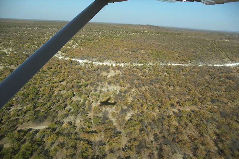 There was a major change in the geography from Damaraland's rocky mountains to the savanna and mopane trees near the Etosha Nation Park area.