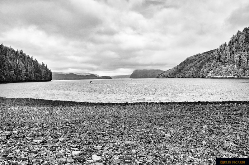 Salmon Bay in B&W