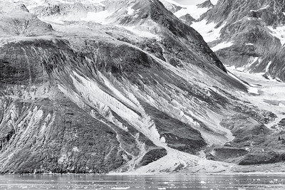 Glacier Bay National Park. Near the Hopkins glacier.