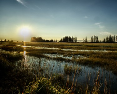 Alaskan Salt Marsh Dawn