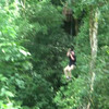 Jim zip lining in Laos.