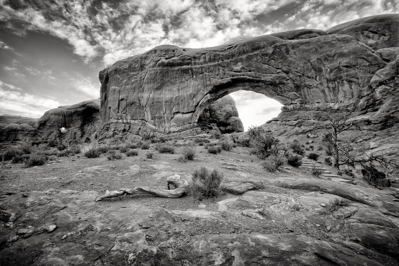 NORTH WINDOW-ARCHES N.P.