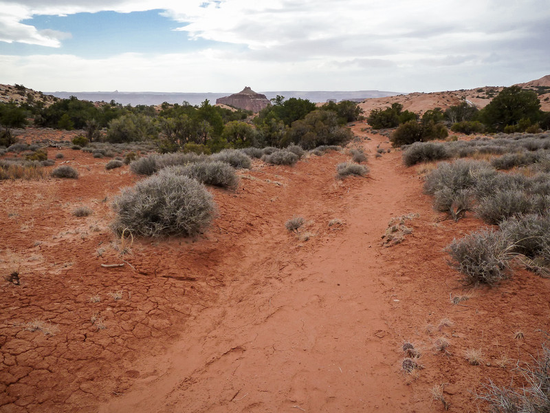"TRAILHEAD TO ""FALSE KIVA"""