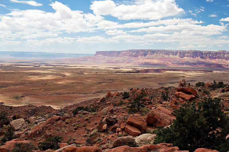 VERMILLION CLIFFS OVERLOOKING MARBLE CANYON AND THE COLORADO RIVER (THE BEGINNING OF THE GRAND CANYON)