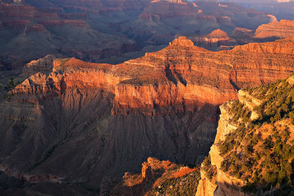 FADING LIGHT AT YAVAPAI POINT