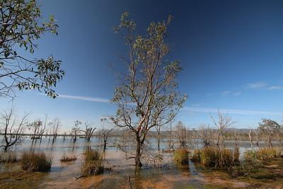 Lake Fyans. Stawell, Victoria, Australië.