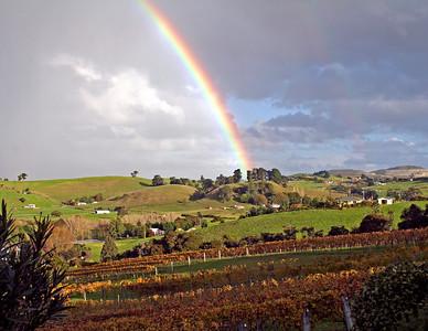 Auckland, Longview wineryc