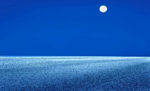 Great Rann of Kutch - Thar Desert, Kutch