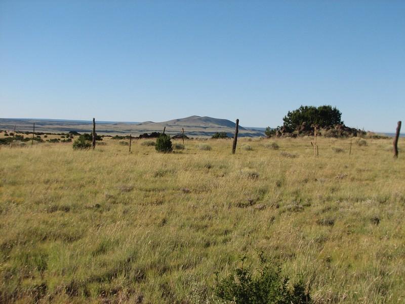 FS411 High plains, big views a little breezy, all is very good.