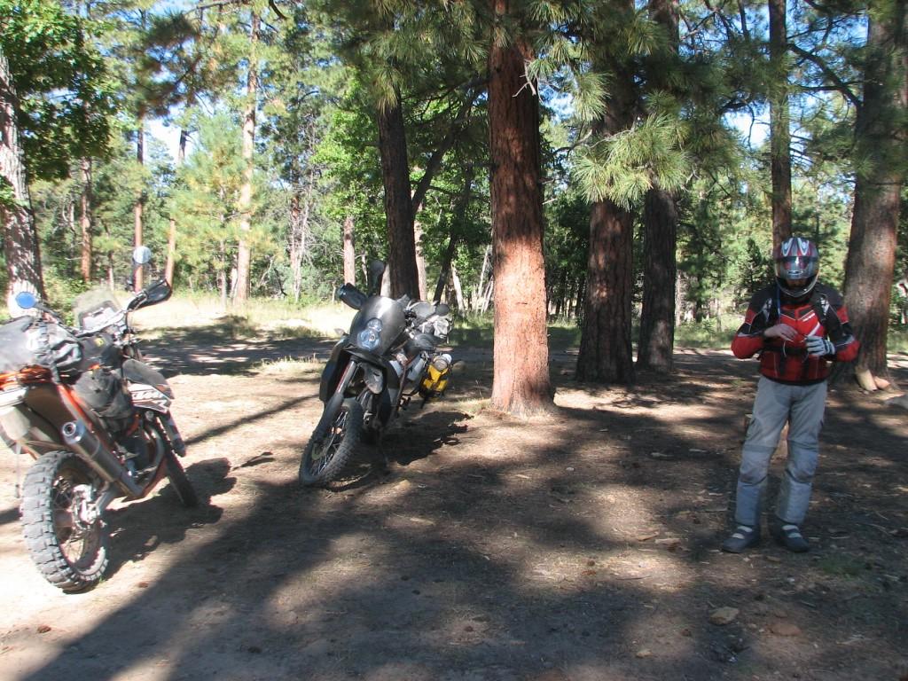 Camp spot Night 2 Mogollon  FS # 96.