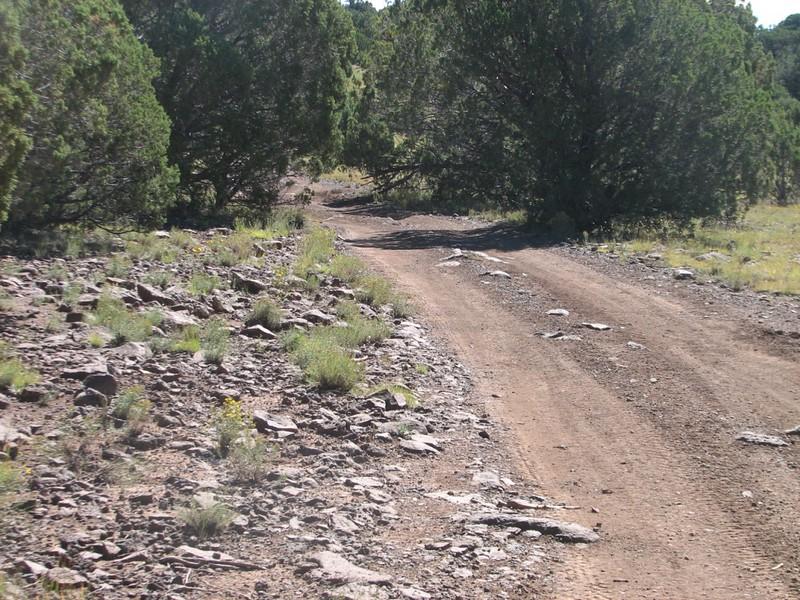 FS # 139A towards  towards Blue ridge / Rt 87 Crossing.