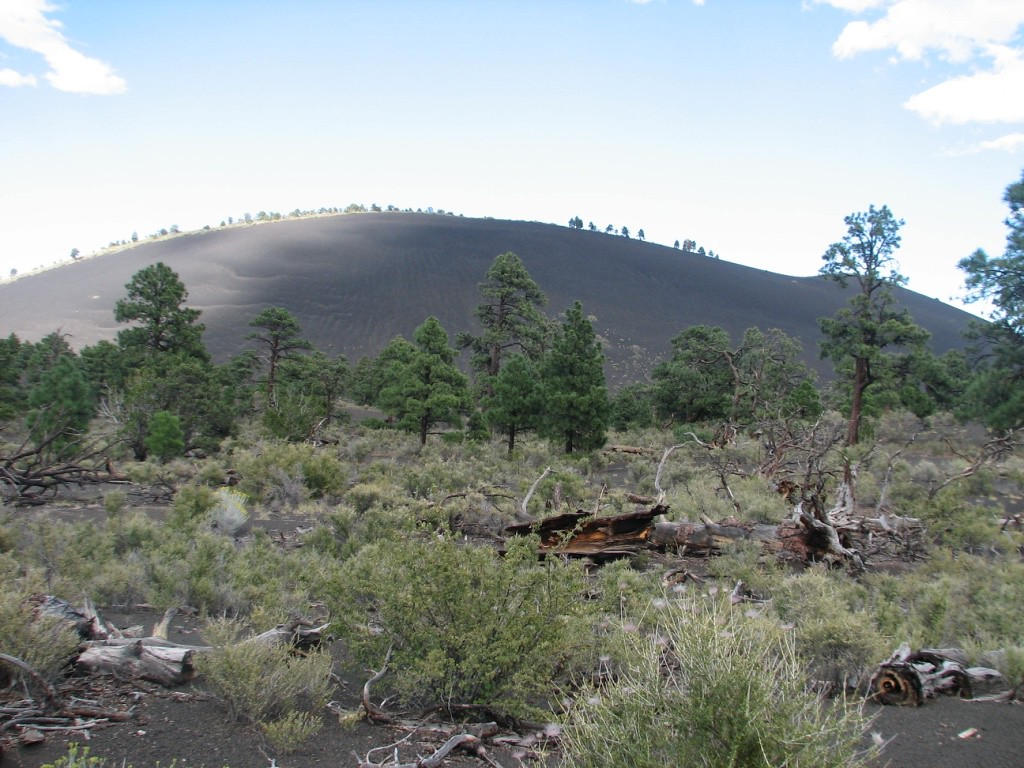 Volcanic mounds around Sunset crater.