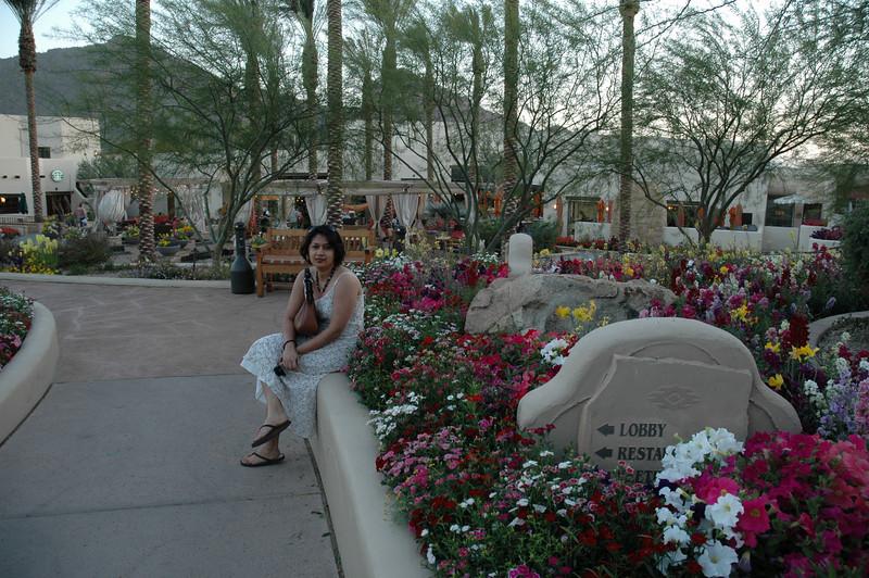 Garden at the JW