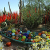 Chihuly Glass Art at Desert Botanical Gardens